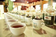 Handunugoda Tea Estate, Ahangama, Sri Lanka