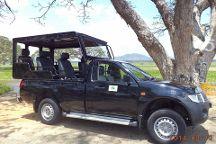Panchi Safari Jeep Tours
