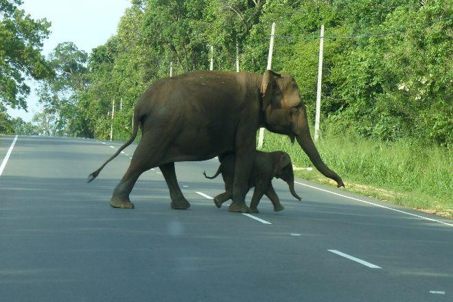 Dayan Tours, Katunayake, Sri Lanka