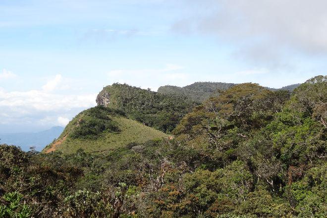 Horton Plains Kalupahana Trail, Ohiya, Sri Lanka