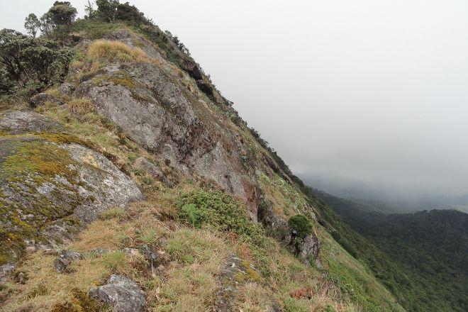 Kirigalpoththa Hike, Ohiya, Sri Lanka