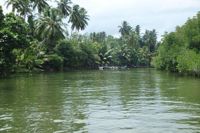 Madu River, Balapitiya, Sri Lanka