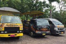 St. Kitts Captain Sunshine Tours