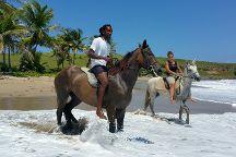 Atlantic Shores Riding Stables, Vieux Fort, St. Lucia