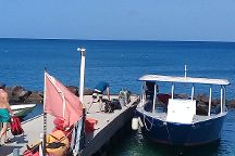 Eastern Caribbean Divers