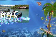 Rainbow Divers Inc. St. Lucia