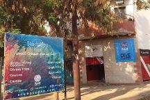 Red Sea Secret Diving Center