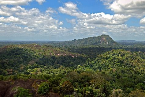 Tafelberg Nature Preserve, Saramacca District, Suriname