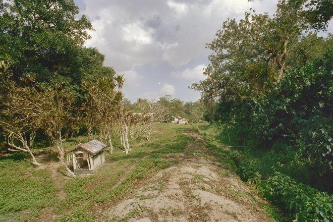 Peperpot Nature Park, Meerzorg, Suriname