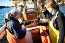 Kastor Boat Trips