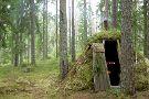 Wild Sweden