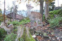 Natur- und Tierpark Goldau, Goldau, Switzerland