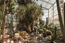 Zurich Succulent Plant Collection, Zurich, Switzerland
