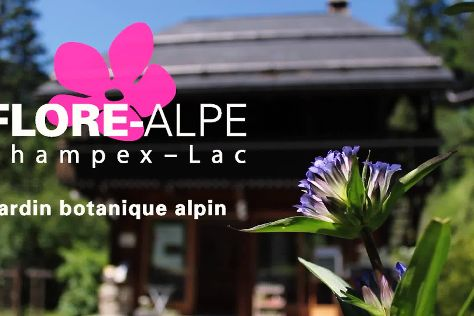 Flore-Alpe Alpine Botanical Garden, Champex, Switzerland