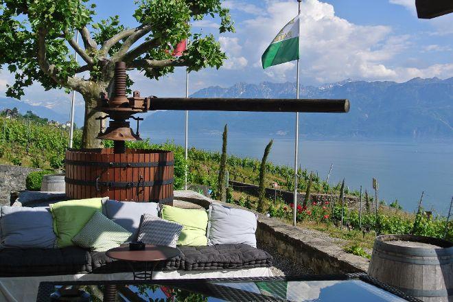 Domaine du Daley, Lutry, Switzerland