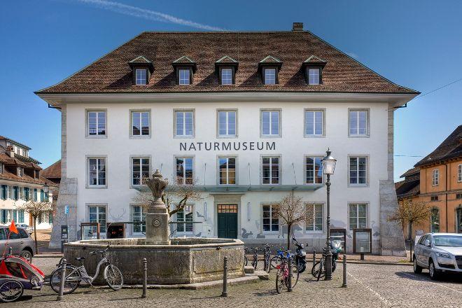 Naturmuseum Solothurn, Solothurn, Switzerland