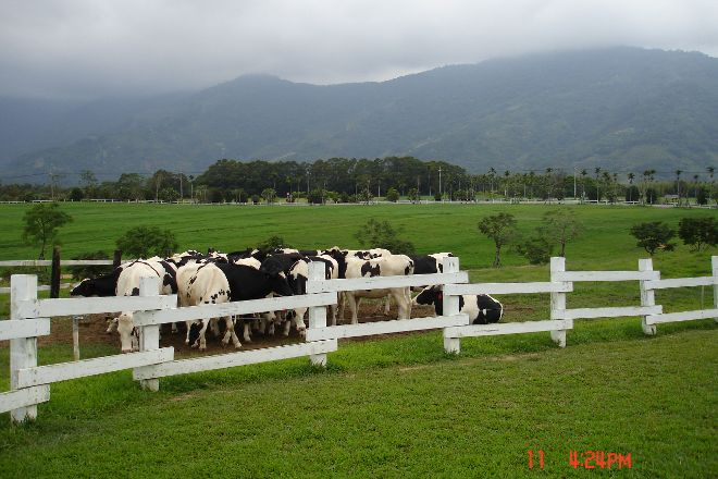 Chu Lu Ranch, Beinan, Taiwan