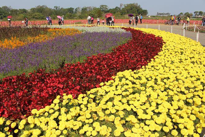 Sea of Flowers in Shinshe, Xinshe, Taiwan