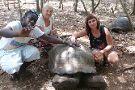 Pongwe Tour & Safari