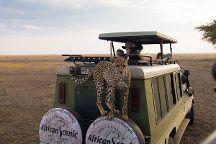 African Scenic Safaris