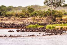 Bantu Pori Journeys, Moshi, Tanzania