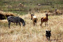 Calabash Adventures, Arusha, Tanzania
