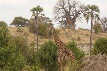 Fed Tours - Day Tours, Arusha, Tanzania