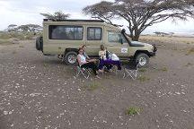Lion King Adventures, Arusha, Tanzania