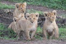 New Adventure Safaris, Arusha, Tanzania