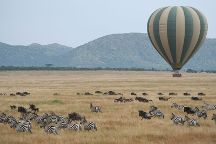 One-way Tours and Safaris
