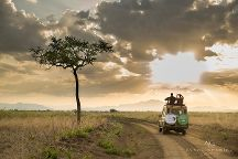 Safari Big 5, Arusha, Tanzania