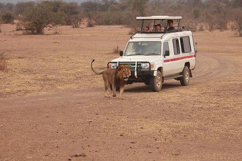 Masumin car hire & safaris, Mwanza, Tanzania