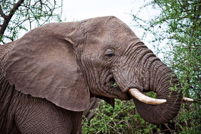 Boma Africa, Arusha, Tanzania
