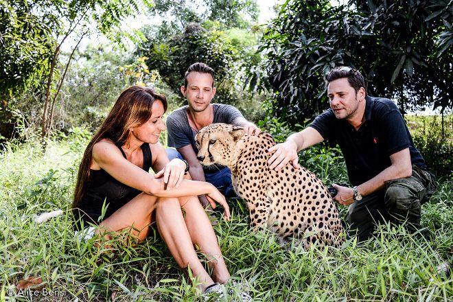 Cheetah's Rock, Zanzibar Island, Tanzania