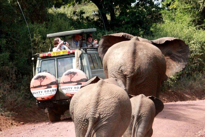 Dusty Roads Adventures & Tours - Day Tours, Arusha, Tanzania