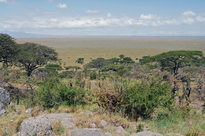 Naabi Hill, Serengeti National Park, Tanzania