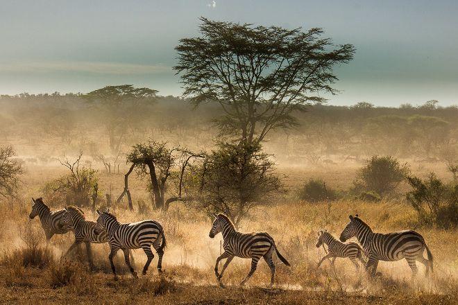 Sayari Tano Tours & Safaris, Arusha, Tanzania