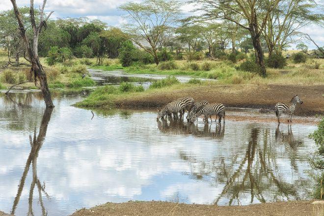 Serengeti Heritage, Arusha, Tanzania