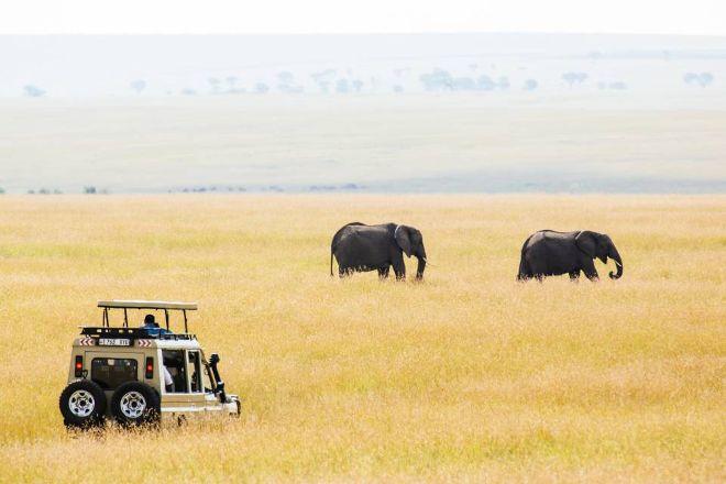 Simba Adventures, Arusha, Tanzania