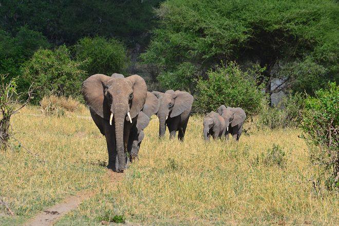 Wilderness First Travel, Arusha, Tanzania