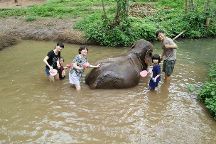 Chiang Mai a la Carte - Day Tours