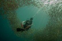 Flip Flop Divers, Ko Lanta, Thailand