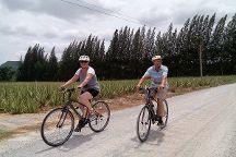 Hua Hin Bike Tours, Hua Hin, Thailand