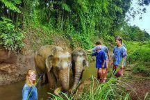Lanna Kingdom Tours, Chiang Mai, Thailand