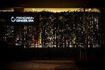 Mandarin Ginger Spa