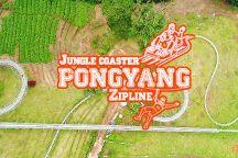 Pongyang Zipline and Jungle Coaster