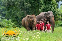 Ran-Tong Save & Rescue Elephant Centre