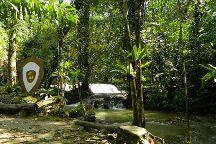 Sa Nang Manora Forest Park, Phang Nga, Thailand