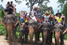 Thai Happy Tour & Travel