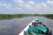 Thale Noi Waterbird Park, Phatthalung Province, Thailand